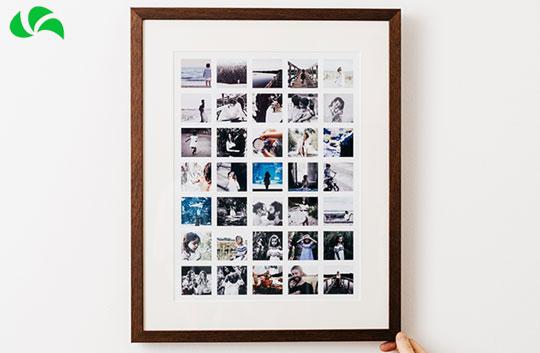 چیدمان چند عکس در یک عکس